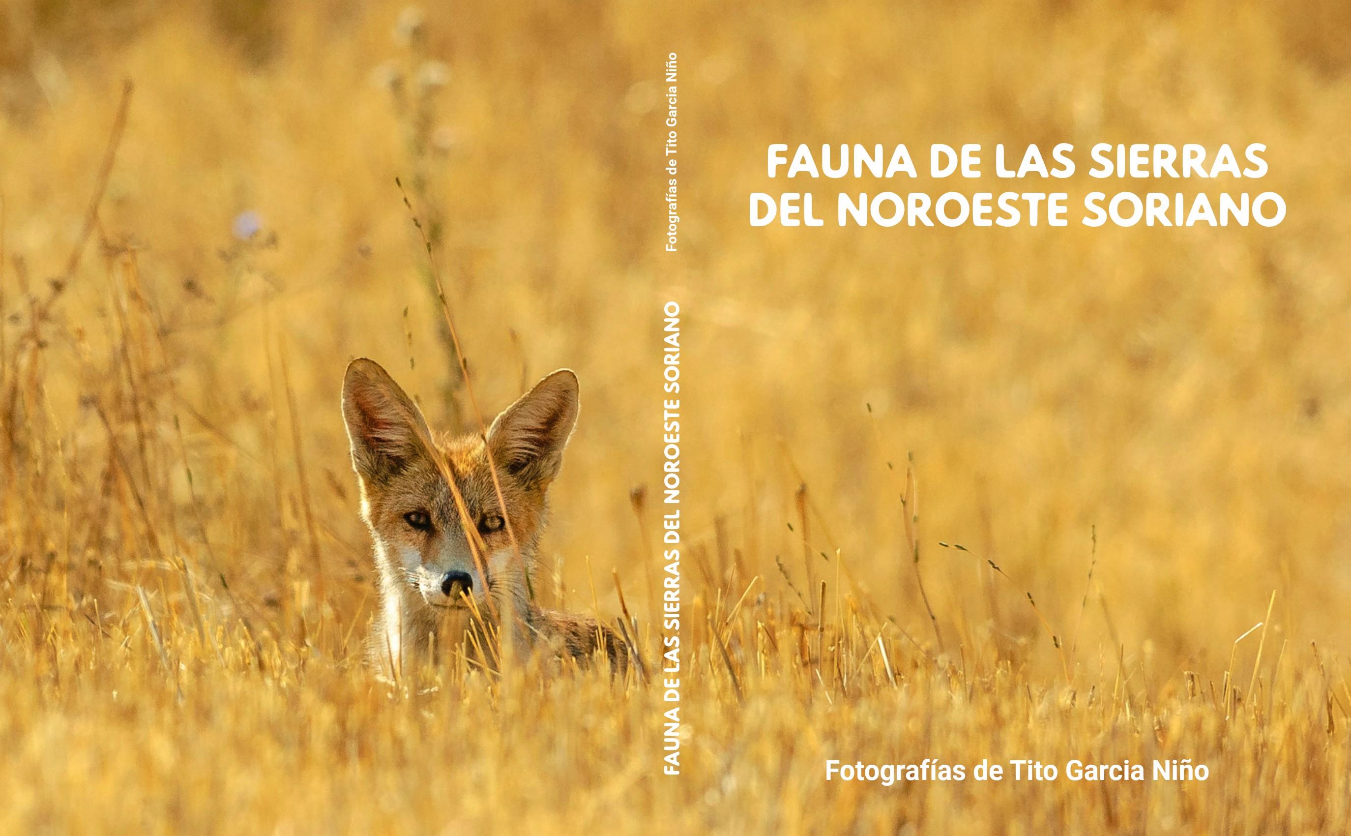 Fauna de las Sierras del Noroeste Soriano. Fotografías de Tito Garcia Niño.