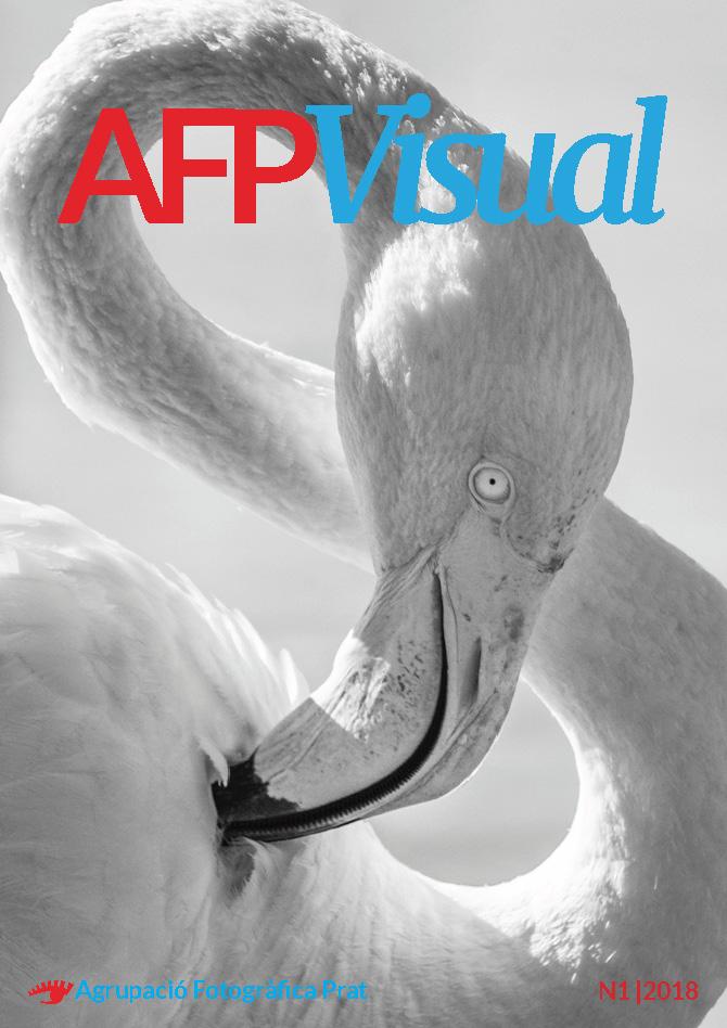 Portada revista AFPVisual n1